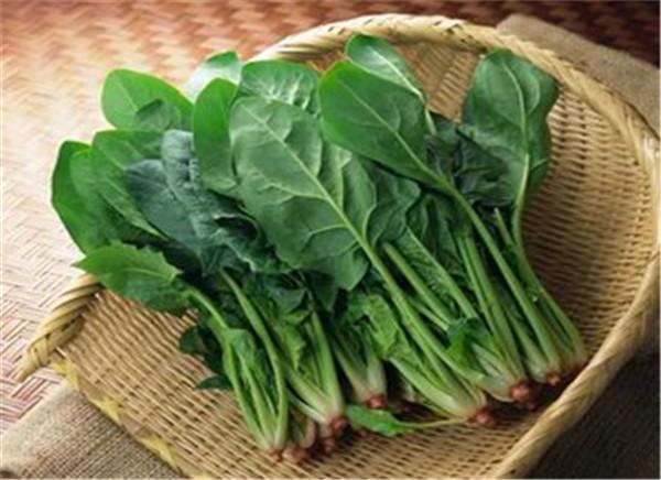 3秋季养生吃什么蔬菜 2.jpg