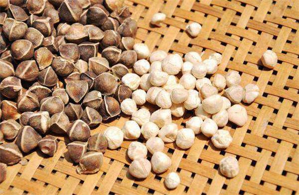 <b>吃辣木籽有什么好处 辣木籽的功效与作用</b>