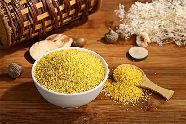 小米的营养价值及功效 吃小米的好处