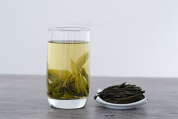苦丁茶的功效与作用 苦丁茶对人体的益处