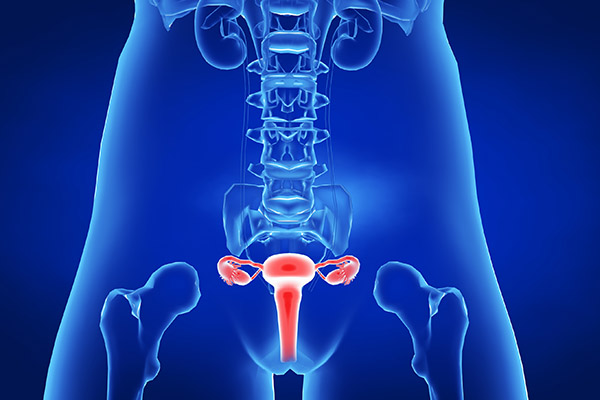 子宫肌瘤1.jpg