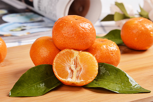 橘子7.jpg