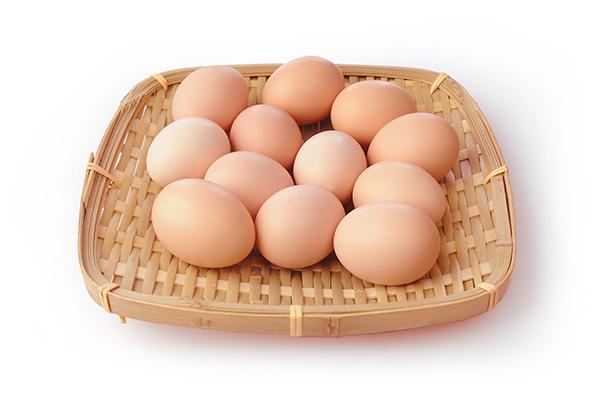 鸡蛋6.jpg