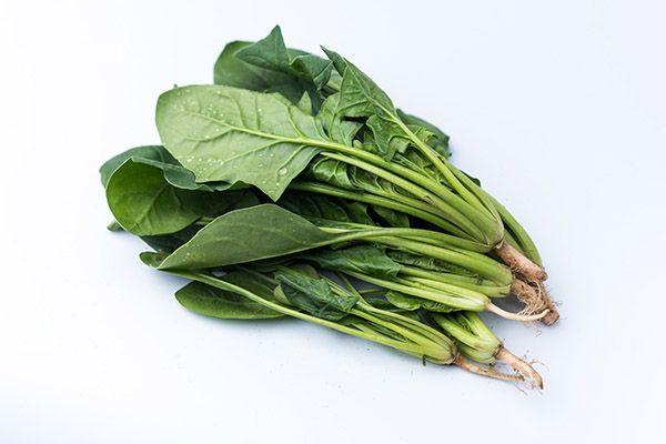 菠菜3.jpg