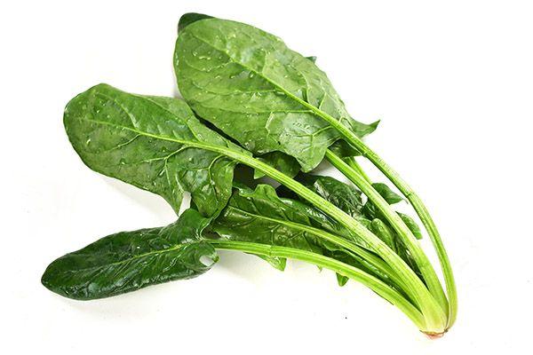 菠菜2.jpg