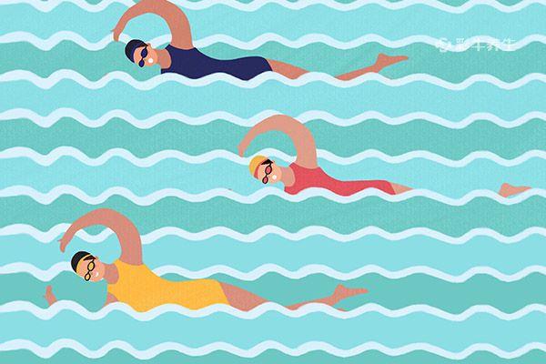 游泳1.jpg