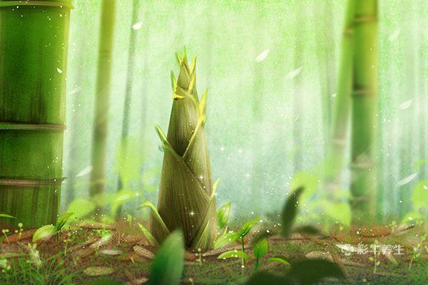 竹笋1.jpg