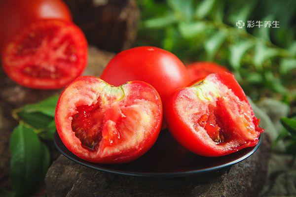 西紅柿6.jpg