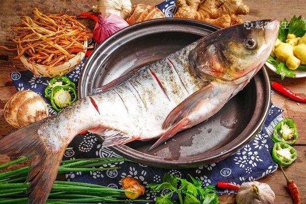 鳙魚1.jpg