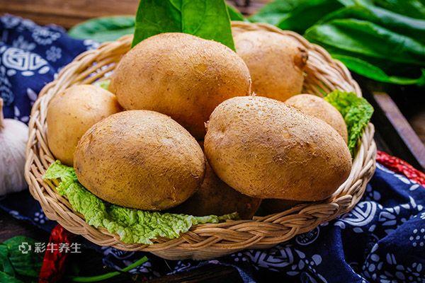 土豆7.jpg