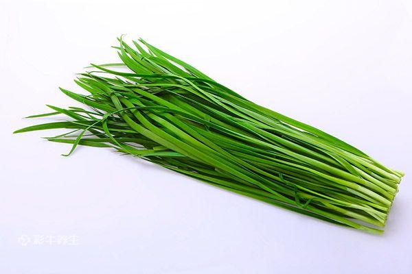 韭菜5.jpg