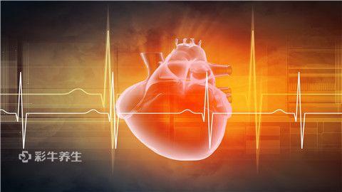 心脏1.jpg