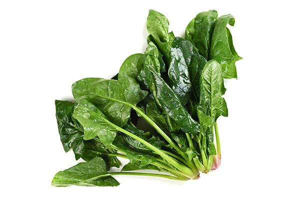 冬季吃什么蔬菜好1.jpg