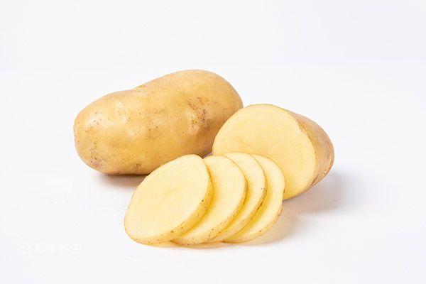 土豆10.jpg