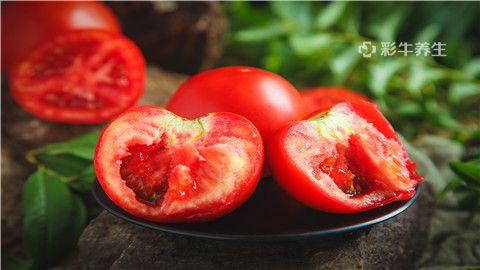 西红柿1.jpg