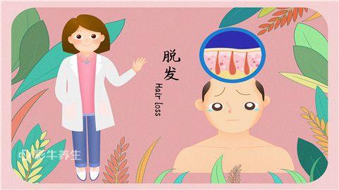 血热脱发怎么治疗