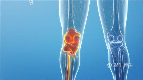 膝蓋 (1).jpg