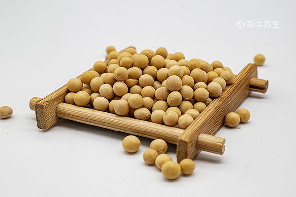 黄豆1.jpg