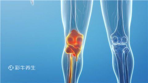膝盖 (1).jpg