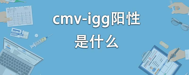 cmv-igg阳性是什么