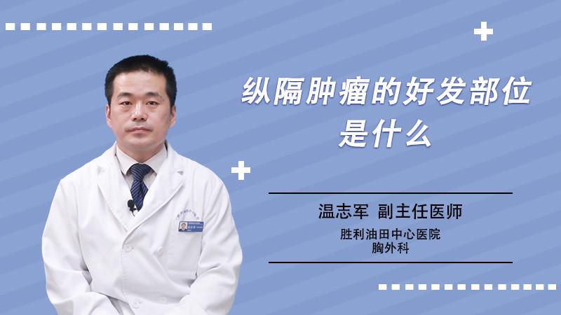 纵隔肿瘤的好发部位是什么