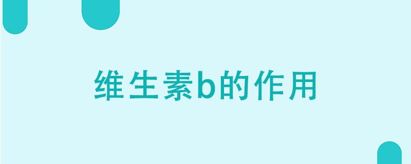 维生素b的作用
