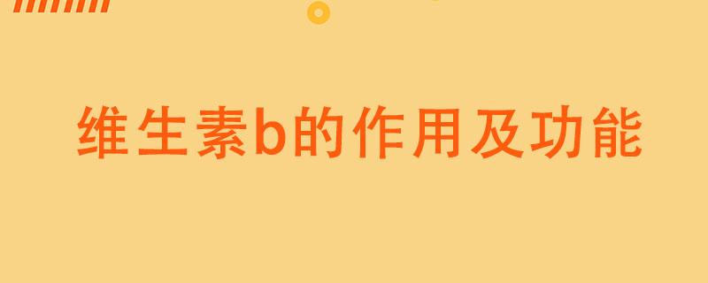 维生素b的作用及功能