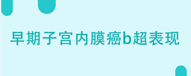 早期子宫内膜癌b超表现