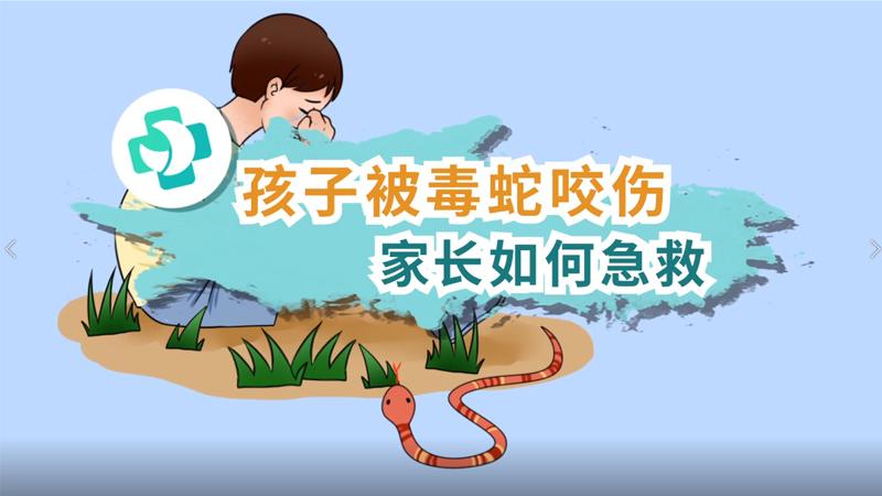 孩子被毒蛇咬伤 家长如何急救