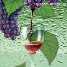 酸枣葡萄酒